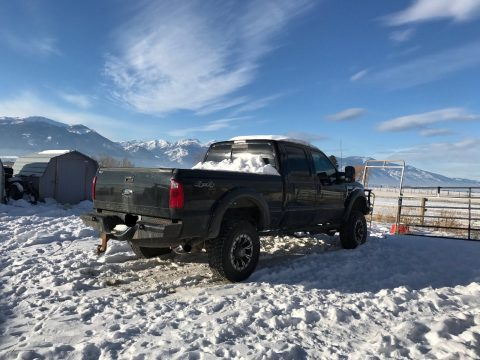 2008 Ford F-350 XLT (not only for snow) for sale